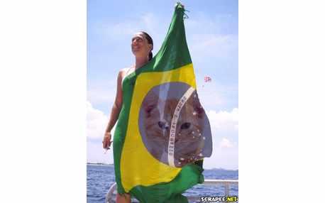 Moldura - Bandeira Do Brasil
