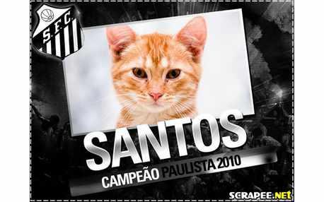 2444-santos-campeao-paulista-2010
