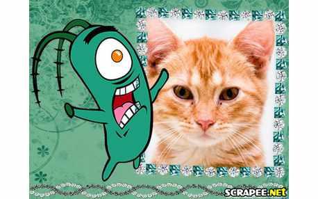 2453-plankton