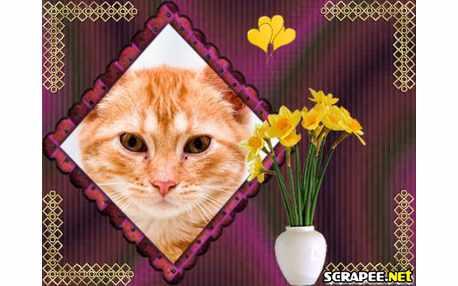 Moldura - Vaso Com Flores