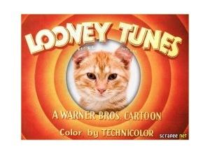 Moldura - Montagem Looney Tunes