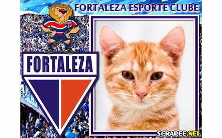 2514-fortaleza-esporte-clube