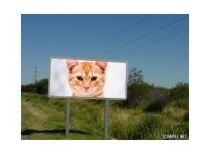 Montagem de foto montagem outdoor estrada