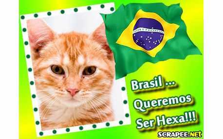 Moldura - Brasil Hexa Campeao