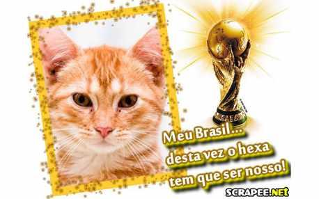 Moldura - Brasil Campeao