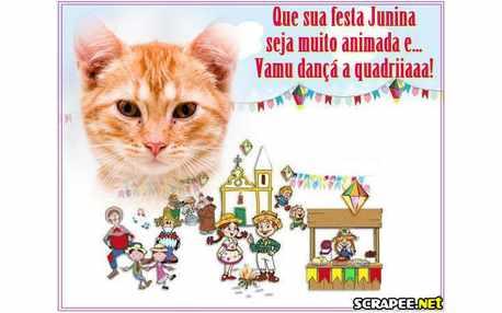 Moldura - Festas Juninas