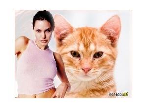 Moldura - Atriz Angelina Jolie