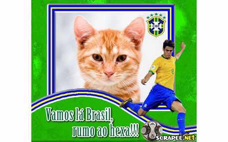 2657-brasil-na-copa