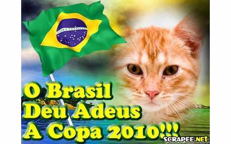 Moldura - Adeus Brasil