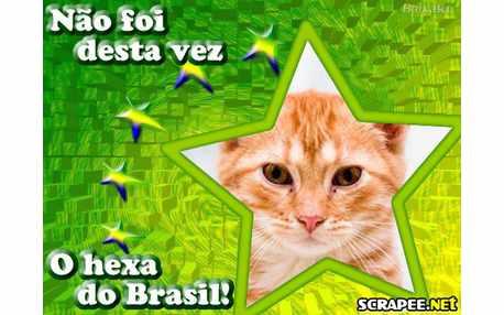 Moldura - Nao Foi Desta Vez Brasil