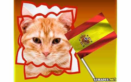 Moldura - Espanha