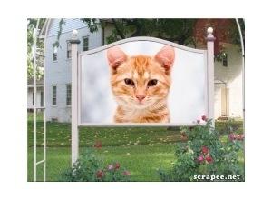 Montagem de foto outdoor em frente casa