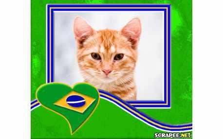 Moldura - Orgulho De Ser Brasileiro