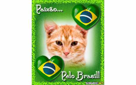 Moldura - Apaixonados Pelo Brasil