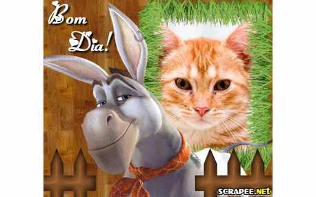 Moldura - Burrinho Do Donkey Xote