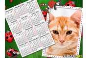 2774-calendario-2011