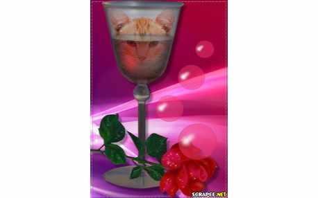 Moldura - Taca De Cristal