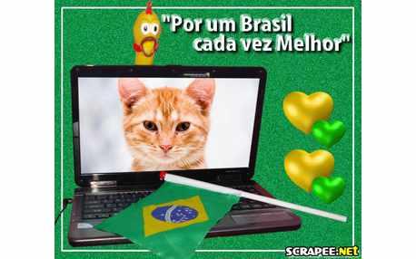 Moldura - Por Um Brasil Melhor