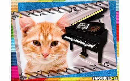 Moldura - Piano