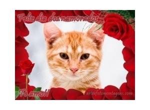 moldura-de-rosas-vermelhas