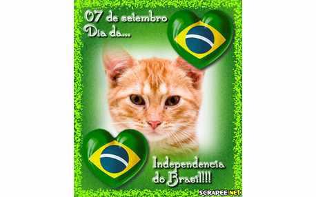 Moldura - Brasil