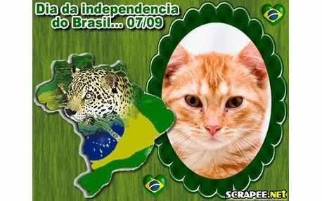 Moldura - Mapa Do Brasil
