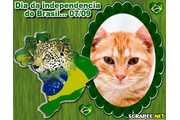 2900-mapa-do-brasil