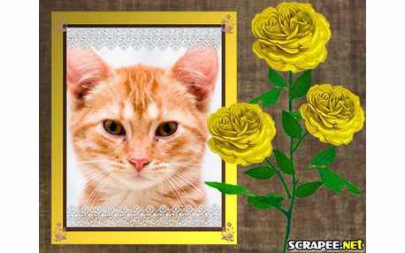 Moldura - Rosas Amarelas