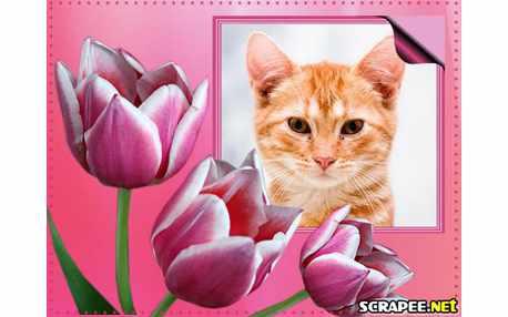 Moldura - Tulipa Rosa Com Branco