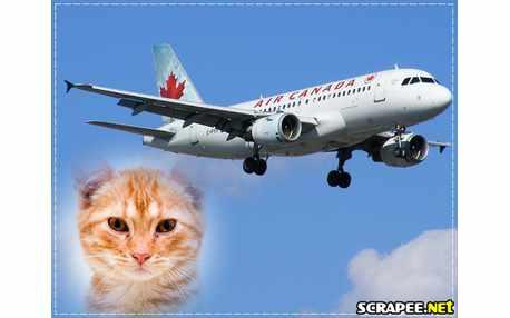 Moldura - Air Canada