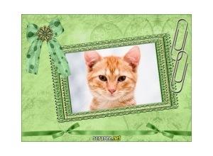 lindo-cartao-verde-2