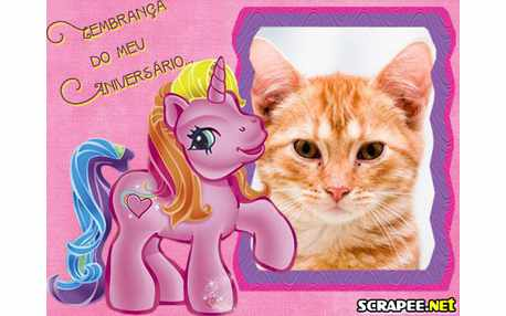2994-lembranca-de-aniversario-do-poney
