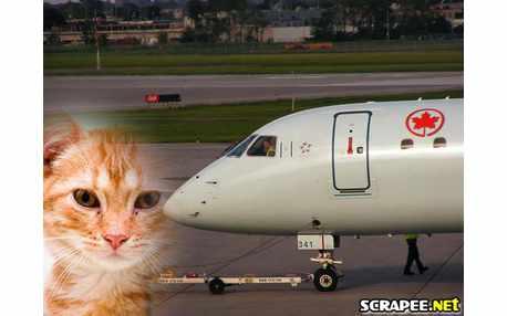 Moldura - Aviao
