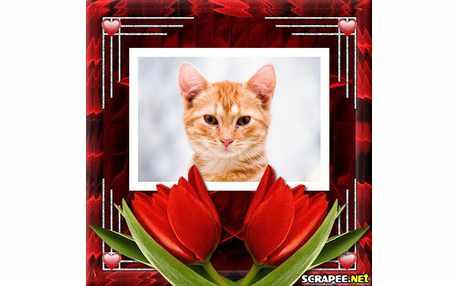 3133-montagem-com-tulipa-vermelha