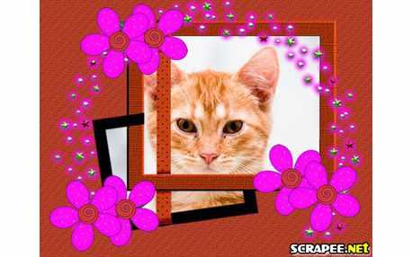 3139-florsinhas-pink