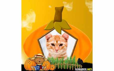 Moldura - Happy Halloween