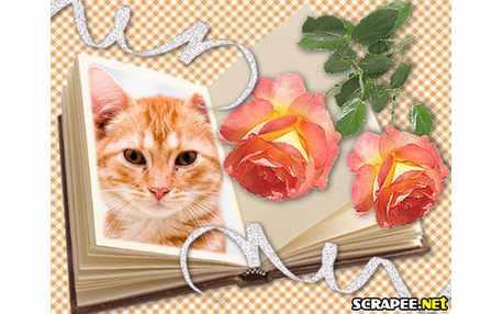 Moldura - Livro Com Rosas