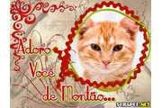 3174-adoro-de-montao