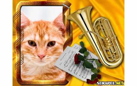 Moldura - Tuba Dourada
