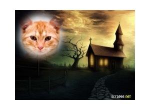 Moldura - Igreja Mal Assombrada