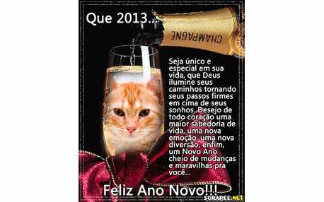 Moldura - Foto Na Taca De Ano Novo 2013