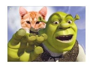 Moldura - Shrek