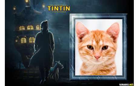5103-TinTin-Filme