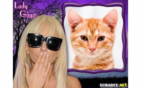 Moldura - Lady Gaga