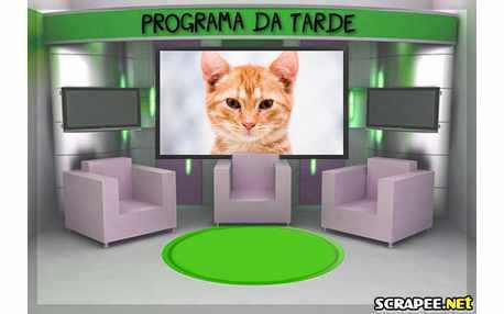 3455-programa-de-tv