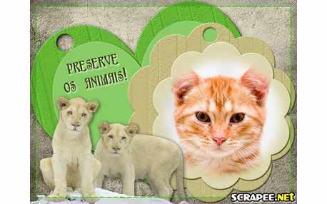3473-Preserve-os-animais