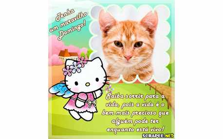 3490-Domingo-da-hello-kitty