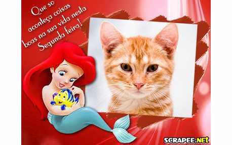 Moldura - Segunda Feira Com Ariel