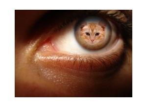 Moldura - Eye Color
