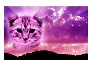 Moldura - Purple Sky